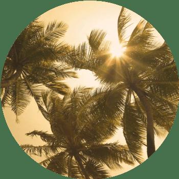 02a14jgs-ebook-38-krachtige-vragen-circle-min