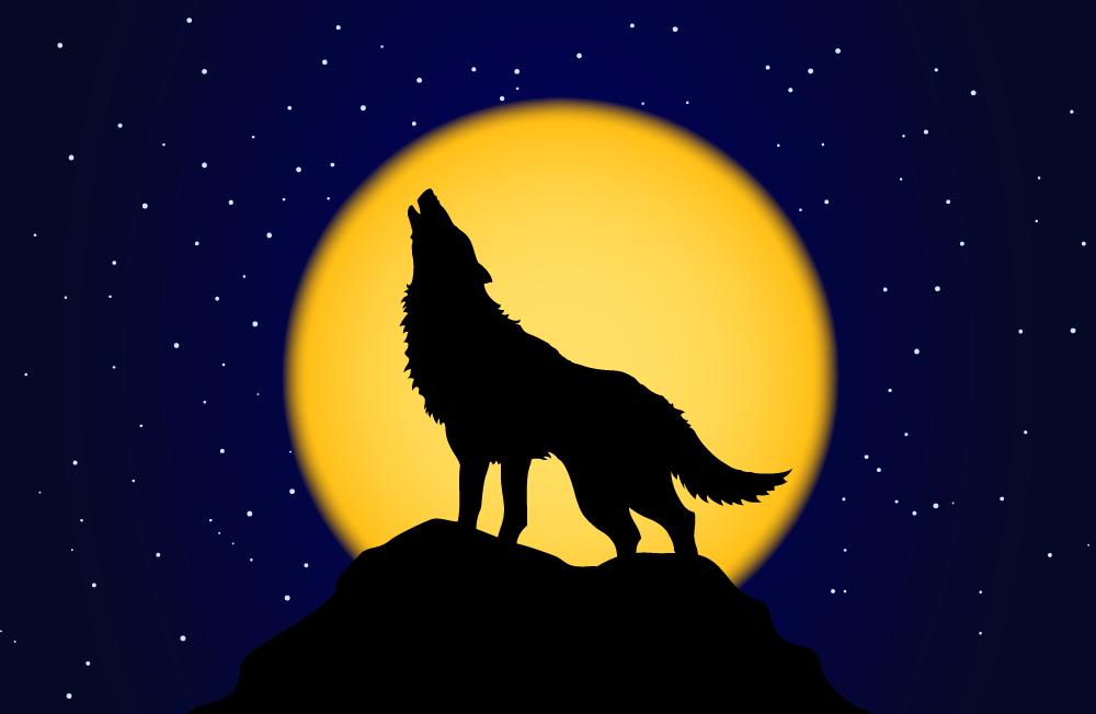 ing_32200_03094-Wolf