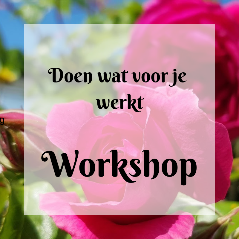 Doen wat voor je werkt Workshop