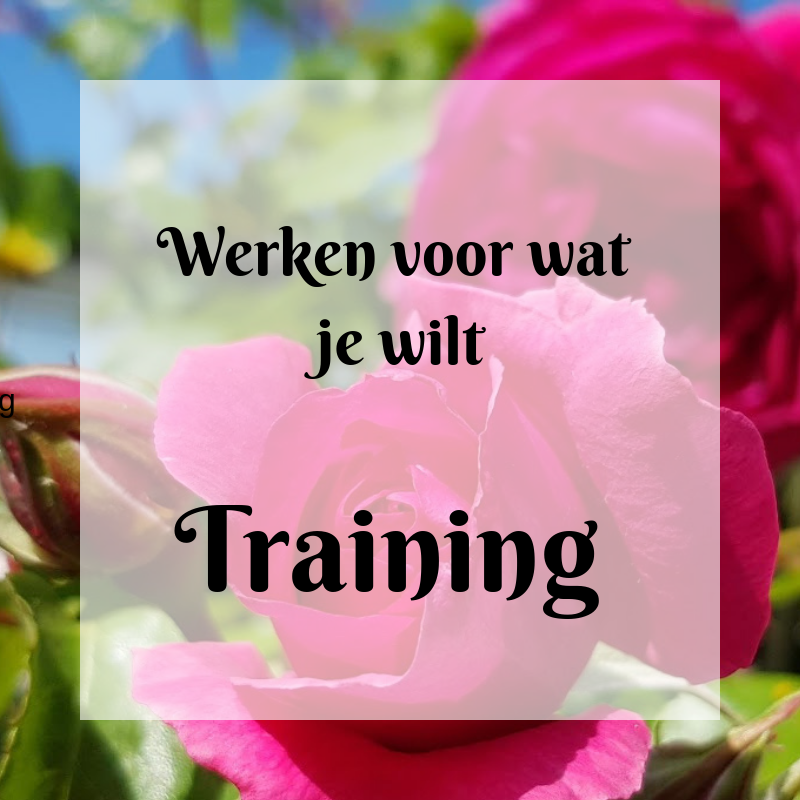 Werken voor wat je wilt Training